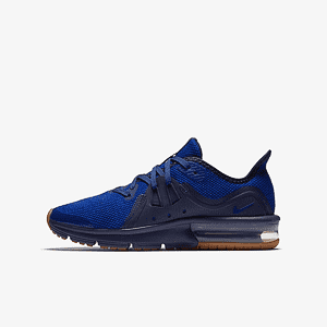 Кроссовки Nike AIR MAX SEQUENT 3 (GS)