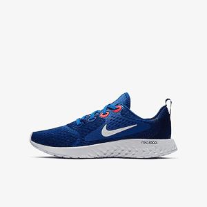 4df05fff Кроссовки для бега Nike LEGEND REACT (GS)
